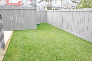Photo 29: 44 2004 Trumpeter Way NW in Edmonton: Zone 59 Townhouse for sale : MLS®# E4172445