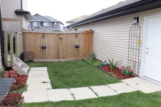 Photo 31: 120 Cy Becker BLVD in Edmonton: House Half Duplex for sale : MLS®# E4182256