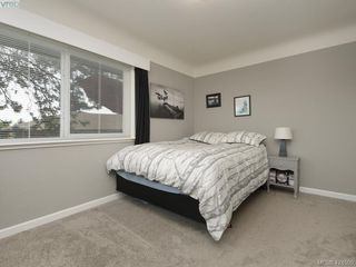 Photo 11: 3321 Keats St in VICTORIA: SE Cedar Hill House for sale (Saanich East)  : MLS®# 838417