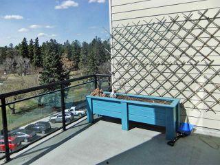 Photo 15: 432 10531 117 Street in Edmonton: Zone 08 Condo for sale : MLS®# E4195509