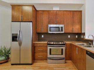 Photo 8: 432 10531 117 Street in Edmonton: Zone 08 Condo for sale : MLS®# E4195509