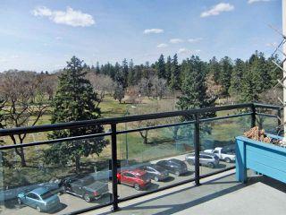 Photo 16: 432 10531 117 Street in Edmonton: Zone 08 Condo for sale : MLS®# E4195509