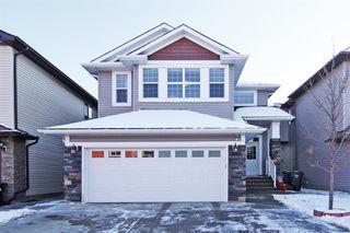 Main Photo: 137 Saddlelake Grove NE in Calgary: Saddle Ridge Detached for sale : MLS®# A1043294