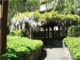 Photo 15: 308 1366 Hillside Ave in VICTORIA: Vi Oaklands Condo for sale (Victoria)  : MLS®# 538617