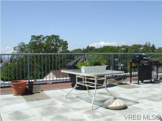 Photo 13: 308 1366 Hillside Ave in VICTORIA: Vi Oaklands Condo for sale (Victoria)  : MLS®# 538617