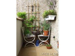 Photo 9: 308 1366 Hillside Ave in VICTORIA: Vi Oaklands Condo for sale (Victoria)  : MLS®# 538617