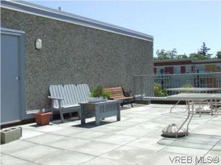 Photo 14: 308 1366 Hillside Ave in VICTORIA: Vi Oaklands Condo for sale (Victoria)  : MLS®# 538617