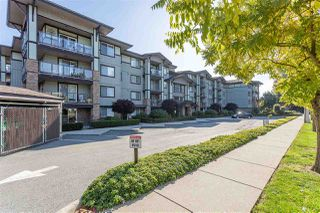 """Main Photo: 307 2038 SANDALWOOD Crescent in Abbotsford: Central Abbotsford Condo for sale in """"The Element"""" : MLS®# R2413914"""