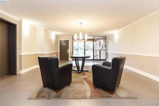 Photo 3: 321 1870 McKenzie Ave in VICTORIA: SE Lambrick Park Condo for sale (Saanich East)  : MLS®# 833953