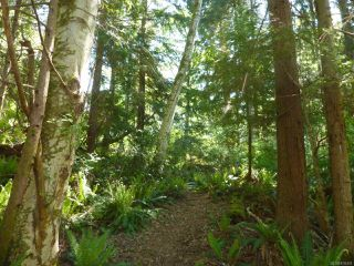 Main Photo: LOT 2 Nole Rd in QUADRA ISLAND: Isl Quadra Island Land for sale (Islands)  : MLS®# 839428