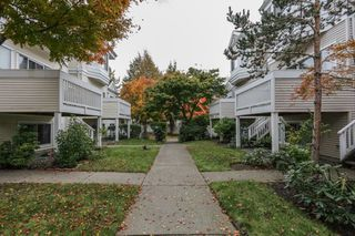 "Photo 31: 33 12500 MCNEELY Drive in Richmond: East Cambie Townhouse for sale in ""FRANCISCO VILLAGE"" : MLS®# R2512866"