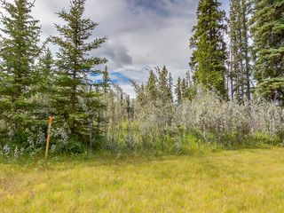 Photo 4: 15-34364 RANGE ROAD 42 in : Rural Mountain View County Land for sale (Mountain View)