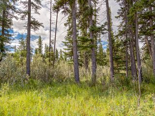 Photo 8: 15-34364 RANGE ROAD 42 in : Rural Mountain View County Land for sale (Mountain View)