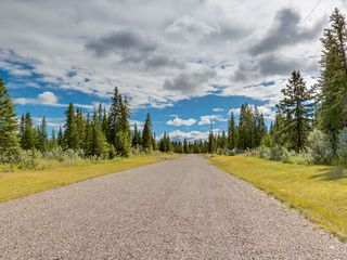 Photo 20: 15-34364 RANGE ROAD 42 in : Rural Mountain View County Land for sale (Mountain View)