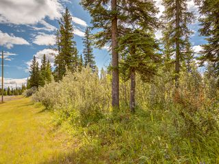 Photo 10: 15-34364 RANGE ROAD 42 in : Rural Mountain View County Land for sale (Mountain View)