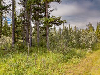 Photo 9: 15-34364 RANGE ROAD 42 in : Rural Mountain View County Land for sale (Mountain View)