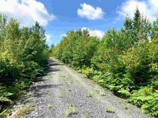 Photo 6: Lot 6 Anderson Drive in Goldenville: 303-Guysborough County Vacant Land for sale (Highland Region)  : MLS®# 202016652