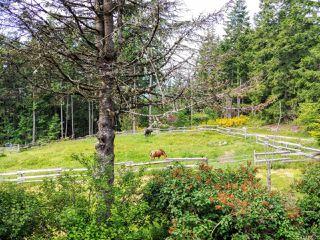 Photo 57: 6645 Hillcrest Rd in : Du West Duncan House for sale (Duncan)  : MLS®# 856828