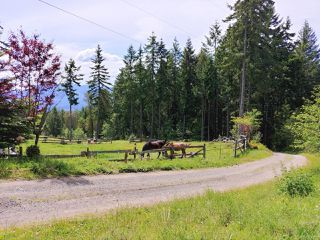 Photo 56: 6645 Hillcrest Rd in : Du West Duncan House for sale (Duncan)  : MLS®# 856828