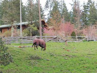 Photo 63: 6645 Hillcrest Rd in : Du West Duncan House for sale (Duncan)  : MLS®# 856828