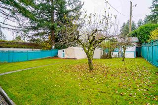 Photo 34: 1933 KING GEORGE Boulevard in Surrey: King George Corridor House for sale (South Surrey White Rock)  : MLS®# R2519196