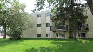 Main Photo: 10B 13230 FORT Road in Edmonton: Zone 02 Condo for sale : MLS®# E4175953