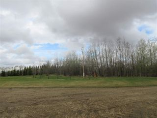 Photo 24: 57415 RR 260: Rural Sturgeon County House for sale : MLS®# E4196537