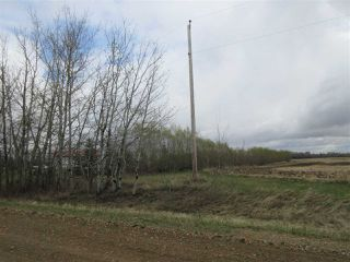Photo 38: 57415 RR 260: Rural Sturgeon County House for sale : MLS®# E4196537