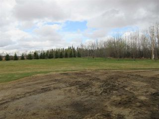 Photo 23: 57415 RR 260: Rural Sturgeon County House for sale : MLS®# E4196537