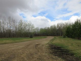 Photo 25: 57415 RR 260: Rural Sturgeon County House for sale : MLS®# E4196537