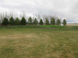 Photo 32: 57415 RR 260: Rural Sturgeon County House for sale : MLS®# E4196537