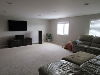 Photo 16: 57415 RR 260: Rural Sturgeon County House for sale : MLS®# E4196537