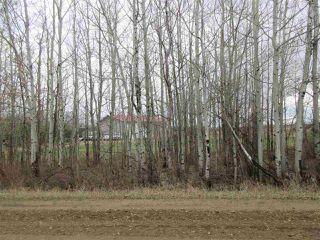 Photo 36: 57415 RR 260: Rural Sturgeon County House for sale : MLS®# E4196537