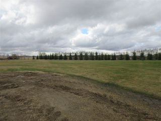Photo 26: 57415 RR 260: Rural Sturgeon County House for sale : MLS®# E4196537
