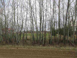 Photo 37: 57415 RR 260: Rural Sturgeon County House for sale : MLS®# E4196537