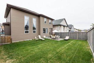 Photo 43: 1719 69 Street SW in Edmonton: Zone 53 House for sale : MLS®# E4198055