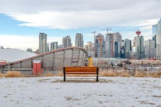 Photo 45: 2012 Alexander Street SE in Calgary: Ramsay Detached for sale : MLS®# A1050546