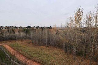 Photo 19: 320 592 Hooke Road in Edmonton: Zone 35 Condo for sale : MLS®# E4218341