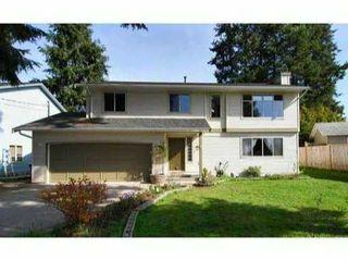 Main Photo: 11208 ELTHAM Street in Maple Ridge: Southwest Maple Ridge House for sale : MLS®# V817158