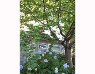Photo 2: 103 1707 YEW Street in Vancouver: Kitsilano Townhouse for sale (Vancouver West)  : MLS®# V774474