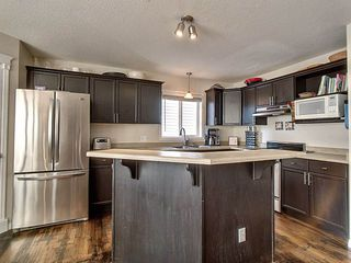 Photo 13: 1930 Tanner Wynd in Edmonton: Zone 14 House for sale : MLS®# E4168677