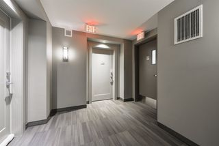Photo 7: 209 5025 EDGEMONT Boulevard in Edmonton: Zone 57 Condo for sale : MLS®# E4177638