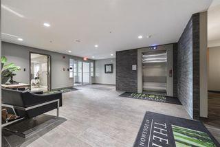 Photo 6: 209 5025 EDGEMONT Boulevard in Edmonton: Zone 57 Condo for sale : MLS®# E4177638