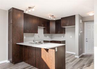 Photo 6: 559 Ebbers Way in Edmonton: Zone 02 House Half Duplex for sale : MLS®# E4180643