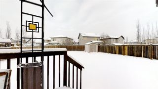 Photo 26: 6332 4 Avenue in Edmonton: Zone 53 House for sale : MLS®# E4184227