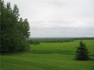 Photo 39: 51201 Range Road 73: Rural Parkland County House for sale : MLS®# E4184303
