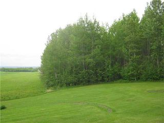 Photo 40: 51201 Range Road 73: Rural Parkland County House for sale : MLS®# E4184303