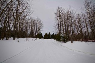 Photo 33: 51201 Range Road 73: Rural Parkland County House for sale : MLS®# E4184303