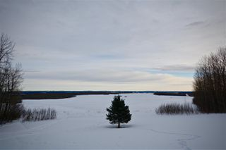 Photo 34: 51201 Range Road 73: Rural Parkland County House for sale : MLS®# E4184303