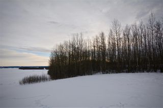 Photo 35: 51201 Range Road 73: Rural Parkland County House for sale : MLS®# E4184303